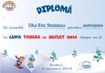 Diploma David Stoica