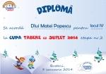 Diploma Matei Popescu